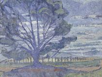 Willunga landscape