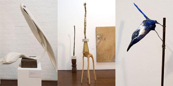 pelican, giraffe, wren