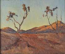 Evening light, Flinders Ranges, SA